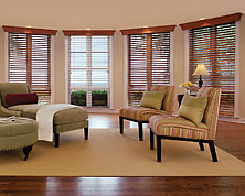 Window Treatment, Blinds and Shutters